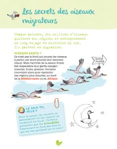 sam_et_les_oiseaux_BD-9